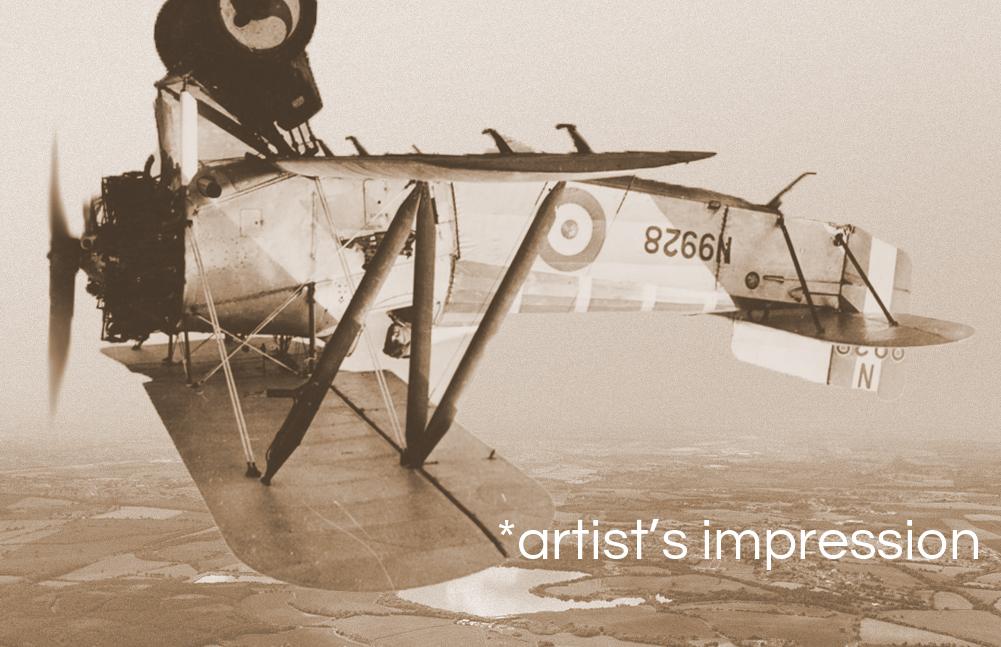 sepia aerobatics photo