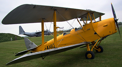 Tiger Moth by Paul Merry