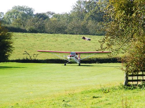 farm strip flying