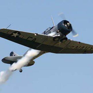 Aerobatic T 6G © D Miller 2007