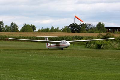 Gliding © D Miller 2009
