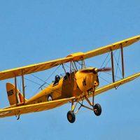 Vintage Yellow Tiger Moth war plane © Sid Mosdell 2012