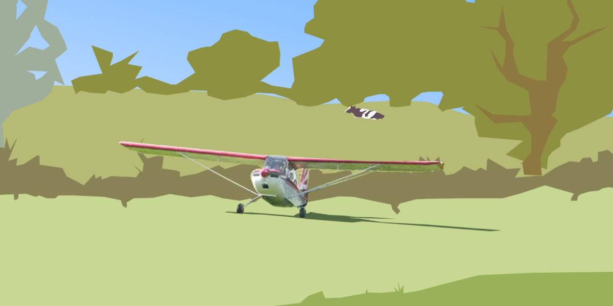 Setting Up Your Own Airstrip 2